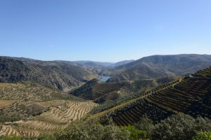 events-in-porto-douro